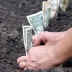 Высаживание денег